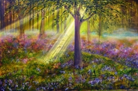 Picture of Bluebell Woods