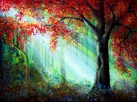 Picture of Autumn Rays