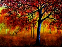 Picture of Autumn Fire