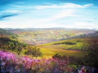 Picture of Fields of Derbyshire