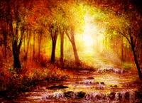 Picture of Autumn River