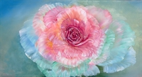 Picture of Rainbow Rose