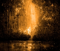 Picture of Reflections in Fire